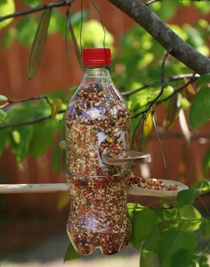 Как сделать кормушку для птиц из пятилитровой пластиковой бутылки? 34 фото пошаговое создание кормушки для синиц из бутылки емкостью 5 литров своими руками