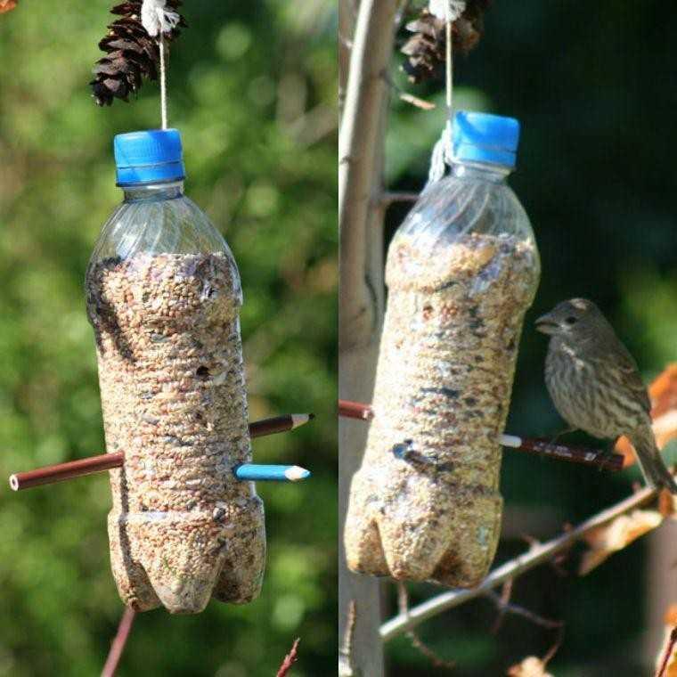 Кормушка из пластиковой бутылки: лучшие идеи и варианты по созданию и размещению (75 фото)