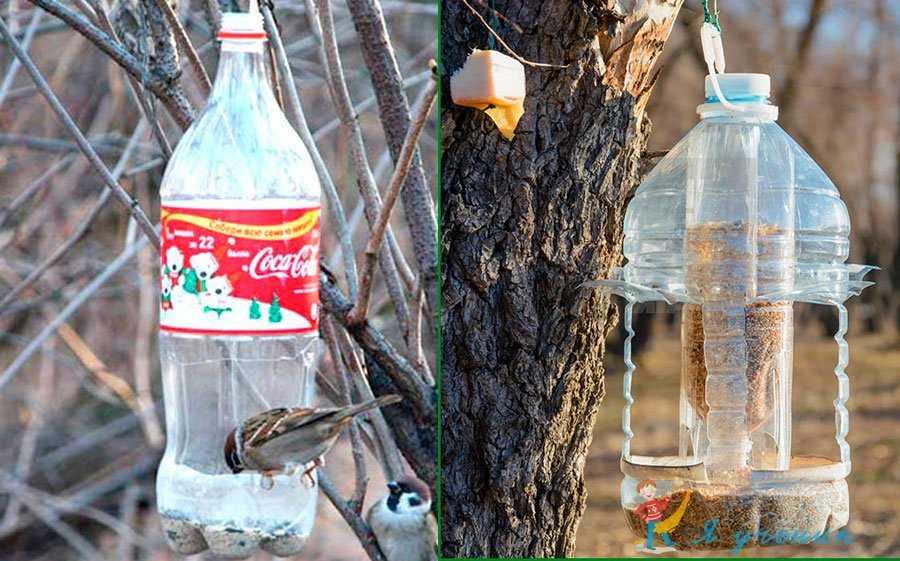 Как сделать кормушку для птиц из пластиковой бутылки — идеи