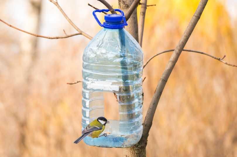Кормушки из пластиковых бутылок своими руками - 70 фото создания удобных и практичных вариантов кормушек